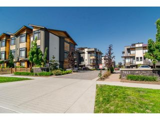 """Photo 2: 49 7811 209 Street in Langley: Willoughby Heights Townhouse for sale in """"EXCHANGE"""" : MLS®# R2179349"""