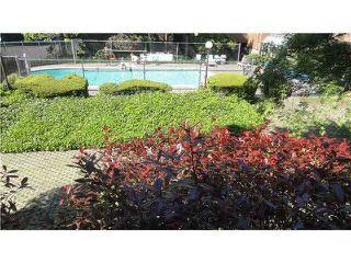 """Photo 18: 311 7295 MOFFATT Road in Richmond: Brighouse South Condo for sale in """"DORCHESTER CIRCLE"""" : MLS®# R2186422"""