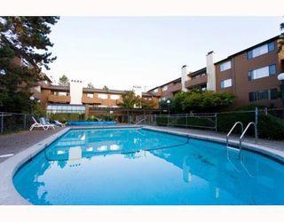 """Photo 16: 311 7295 MOFFATT Road in Richmond: Brighouse South Condo for sale in """"DORCHESTER CIRCLE"""" : MLS®# R2186422"""