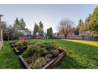 "Photo 18: 33267 SHELLEY Avenue in Abbotsford: Poplar House for sale in ""North Poplar"" : MLS®# R2226307"