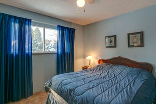 Photo 23: 21946 CLIFF Place in Maple Ridge: West Central House for sale : MLS®# R2229977