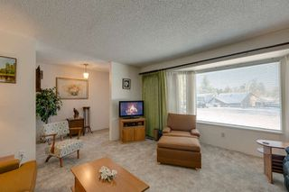 Photo 11: 21946 CLIFF Place in Maple Ridge: West Central House for sale : MLS®# R2229977