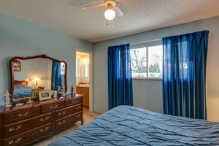 Photo 24: 21946 CLIFF Place in Maple Ridge: West Central House for sale : MLS®# R2229977