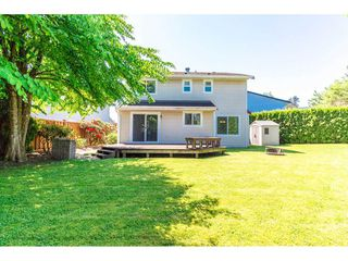 Photo 19: 3278 271B Street in Langley: Aldergrove Langley House for sale : MLS®# R2267270