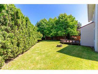 Photo 20: 3278 271B Street in Langley: Aldergrove Langley House for sale : MLS®# R2267270