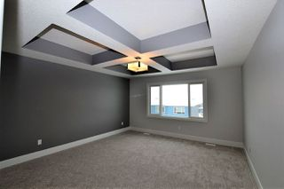 Photo 15: 3858 ROBINS Crescent in Edmonton: Zone 59 House for sale : MLS®# E4144668
