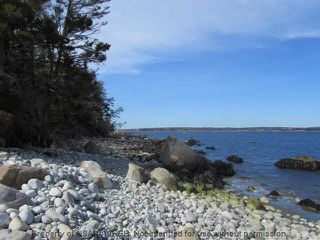 Photo 13: 1931 SHORE Road in Carleton Village: 407-Shelburne County Residential for sale (South Shore)  : MLS®# 201915322