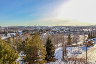Photo 20: 411 530 HOOKE Road in Edmonton: Zone 35 Condo for sale : MLS®# E4224270