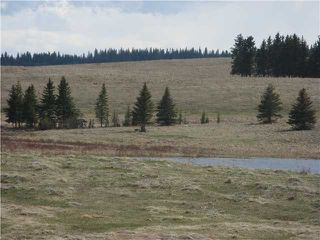 Photo 2: HWY # 1 TO HWY # 68 SOUTH in CALGARY: Rural Bighorn M.D. Rural Land for sale : MLS®# C3615920