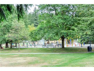 "Photo 18: 115 1040 KING ALBERT Street in Coquitlam: Central Coquitlam Condo for sale in ""AUSTIN HEIGHTS"" : MLS®# V1113219"