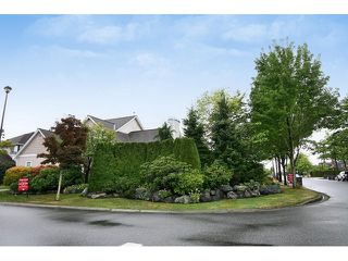 Photo 18: 6497 188A Street in Surrey: Cloverdale BC House for sale (Cloverdale)  : MLS®# F1450620