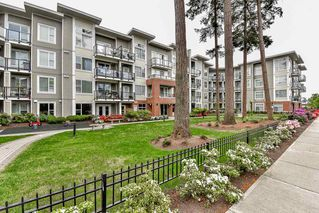 "Photo 18: 224 15956 86A Avenue in Surrey: Fleetwood Tynehead Condo for sale in ""Ascend"" : MLS®# R2065905"