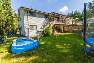 Photo 4: 20892 DEWDNEY TRUNK Road in Maple Ridge: Southwest Maple Ridge House 1/2 Duplex for sale : MLS®# R2098243