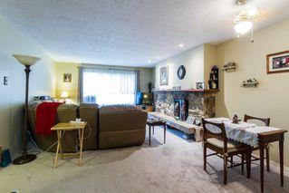 Photo 8: 20892 DEWDNEY TRUNK Road in Maple Ridge: Southwest Maple Ridge House 1/2 Duplex for sale : MLS®# R2098243