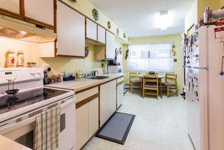 Photo 19: 20892 DEWDNEY TRUNK Road in Maple Ridge: Southwest Maple Ridge House 1/2 Duplex for sale : MLS®# R2098243