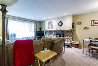 Photo 7: 20892 DEWDNEY TRUNK Road in Maple Ridge: Southwest Maple Ridge House 1/2 Duplex for sale : MLS®# R2098243