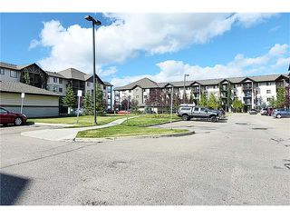 Photo 20: 2441 8 BRIDLECREST Drive SW in Calgary: Bridlewood Condo for sale : MLS®# C4084322