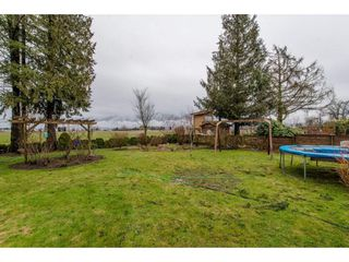 Photo 18: 9618 PAULA Crescent in Chilliwack: Chilliwack E Young-Yale House for sale : MLS®# R2145075