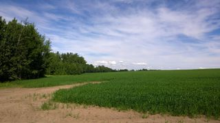 Photo 5: 51425 RGE RD 280 RD: Rural Parkland County Rural Land/Vacant Lot for sale : MLS®# E4051840