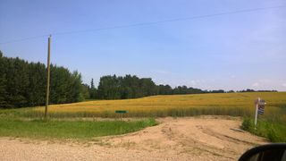 Photo 1: 51425 RGE RD 280 RD: Rural Parkland County Rural Land/Vacant Lot for sale : MLS®# E4051840
