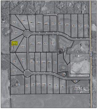 Photo 5: 530 50450 Range Road 234: Rural Leduc County Rural Land/Vacant Lot for sale : MLS®# E4123693