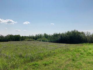 Photo 3: 530 50450 Range Road 234: Rural Leduc County Rural Land/Vacant Lot for sale : MLS®# E4123693