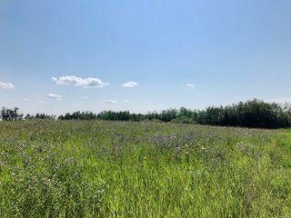 Photo 2: 530 50450 Range Road 234: Rural Leduc County Rural Land/Vacant Lot for sale : MLS®# E4123693