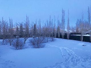 Photo 24: 44 GREENFIELD Close: Fort Saskatchewan House for sale : MLS®# E4143785