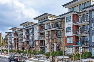 "Main Photo: 214 22562 121 Avenue in Maple Ridge: East Central Condo for sale in ""EDGE ON EDGE 2"" : MLS®# R2347572"