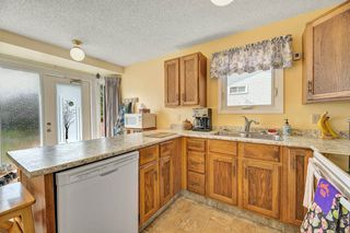 Photo 7: 1008 39 Street in Edmonton: Zone 29 House for sale : MLS®# E4159527