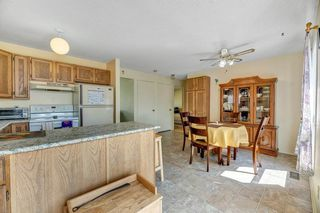Photo 12: 1008 39 Street in Edmonton: Zone 29 House for sale : MLS®# E4159527