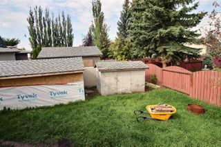 Photo 18: 17731 93 Street in Edmonton: Zone 28 House for sale : MLS®# E4169781