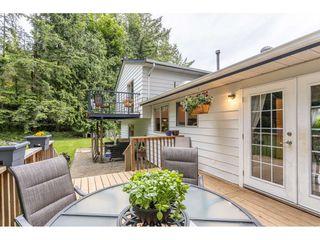 Photo 25: 34610 MOFFAT Avenue in Mission: Hatzic House for sale : MLS®# R2457090