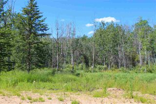 Photo 16: 63430 Rg Rd 471: Rural Bonnyville M.D. Cottage for sale : MLS®# E4205997