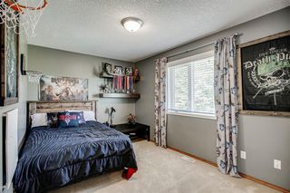 Photo 42: 148 PINTO Lane SE: Airdrie Detached for sale : MLS®# A1019040