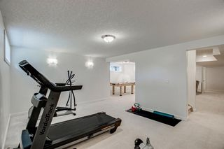 Photo 45: 148 PINTO Lane SE: Airdrie Detached for sale : MLS®# A1019040