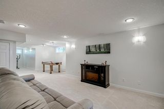 Photo 46: 148 PINTO Lane SE: Airdrie Detached for sale : MLS®# A1019040
