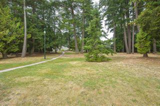 Photo 33: 304 5555 13A Avenue in Delta: Cliff Drive Condo for sale (Tsawwassen)  : MLS®# R2496664