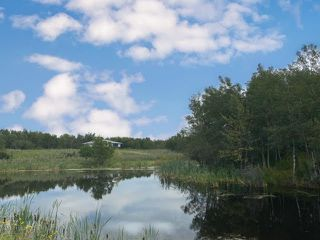 Photo 3: SW 17-44-09 W4: Land Only for sale (MD of Wainwright)  : MLS®# A1029195