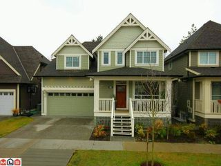 "Photo 1: 17359 1A Avenue in Surrey: Pacific Douglas House for sale in ""SUMMERFIELD"" (South Surrey White Rock)  : MLS®# F1129018"
