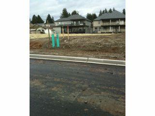 Photo 1: 5986 131ST Street in Surrey: Panorama Ridge Land for sale : MLS®# F1403821