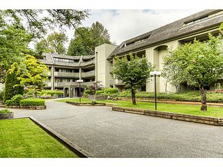 "Photo 16: 217 1200 PACIFIC Street in Coquitlam: North Coquitlam Condo for sale in ""GLENVIEW MANOR"" : MLS®# V1070671"