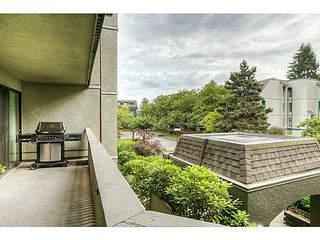 "Photo 14: 217 1200 PACIFIC Street in Coquitlam: North Coquitlam Condo for sale in ""GLENVIEW MANOR"" : MLS®# V1070671"