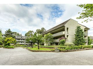"Photo 17: 217 1200 PACIFIC Street in Coquitlam: North Coquitlam Condo for sale in ""GLENVIEW MANOR"" : MLS®# V1070671"