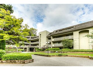 "Photo 18: 217 1200 PACIFIC Street in Coquitlam: North Coquitlam Condo for sale in ""GLENVIEW MANOR"" : MLS®# V1070671"