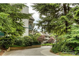 "Photo 19: 217 1200 PACIFIC Street in Coquitlam: North Coquitlam Condo for sale in ""GLENVIEW MANOR"" : MLS®# V1070671"