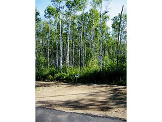Photo 2: Lot 1 Whitetail Ridge Estates: Rural Bonnyville M.D. Rural Land/Vacant Lot for sale : MLS®# E3394424