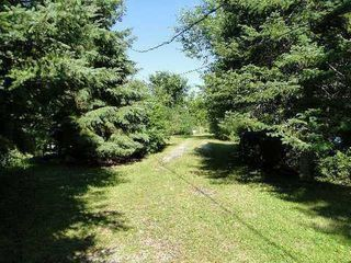 Photo 10: 30 Hargrave Road in Kawartha Lakes: Rural Eldon House (Bungalow) for sale : MLS®# X3124786