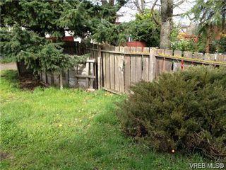 Photo 15: 2948 Cedar Hill Rd in VICTORIA: Vi Oaklands Single Family Detached for sale (Victoria)  : MLS®# 723698