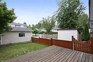 Photo 19: 23712 DEWDNEY TRUNK Road in Maple Ridge: Cottonwood MR House for sale : MLS®# R2081362